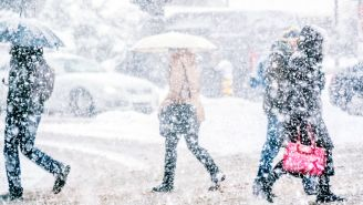 7 Things to Do Before a Winter Storm