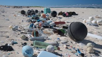 What You Need to Know About Ocean Trash in Hawaii