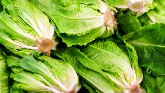 E. coli Outbreak Linked to Romaine Lettuce (Again)