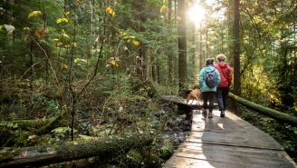 5 Ways Nature Keeps You Healthy, According to Research