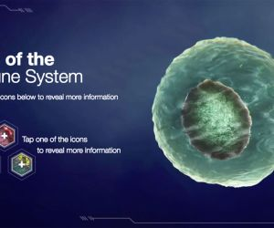 An Interactive Journey Into Immunotherapy