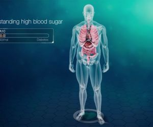 An Interactive Journey Into Diabetes