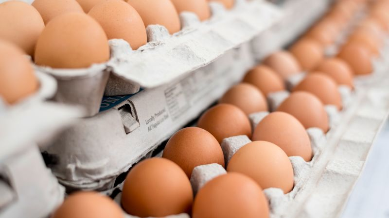 News: Salmonella Outbreak Prompts Recall of 200 Million Eggs