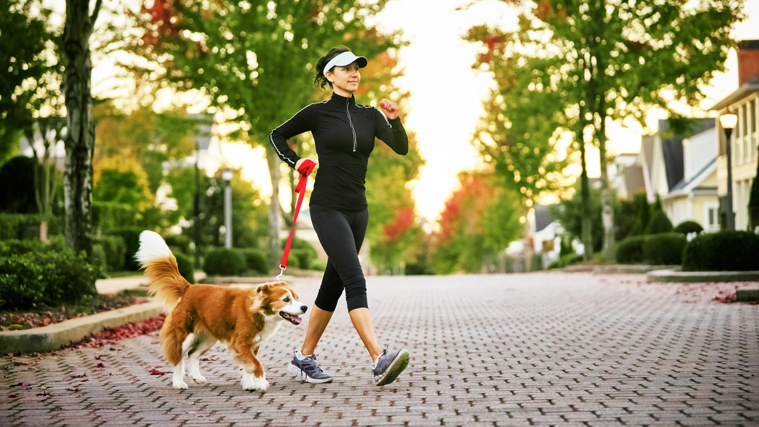 How Two Minutes of Walking Per Hour Can Save Your Life
