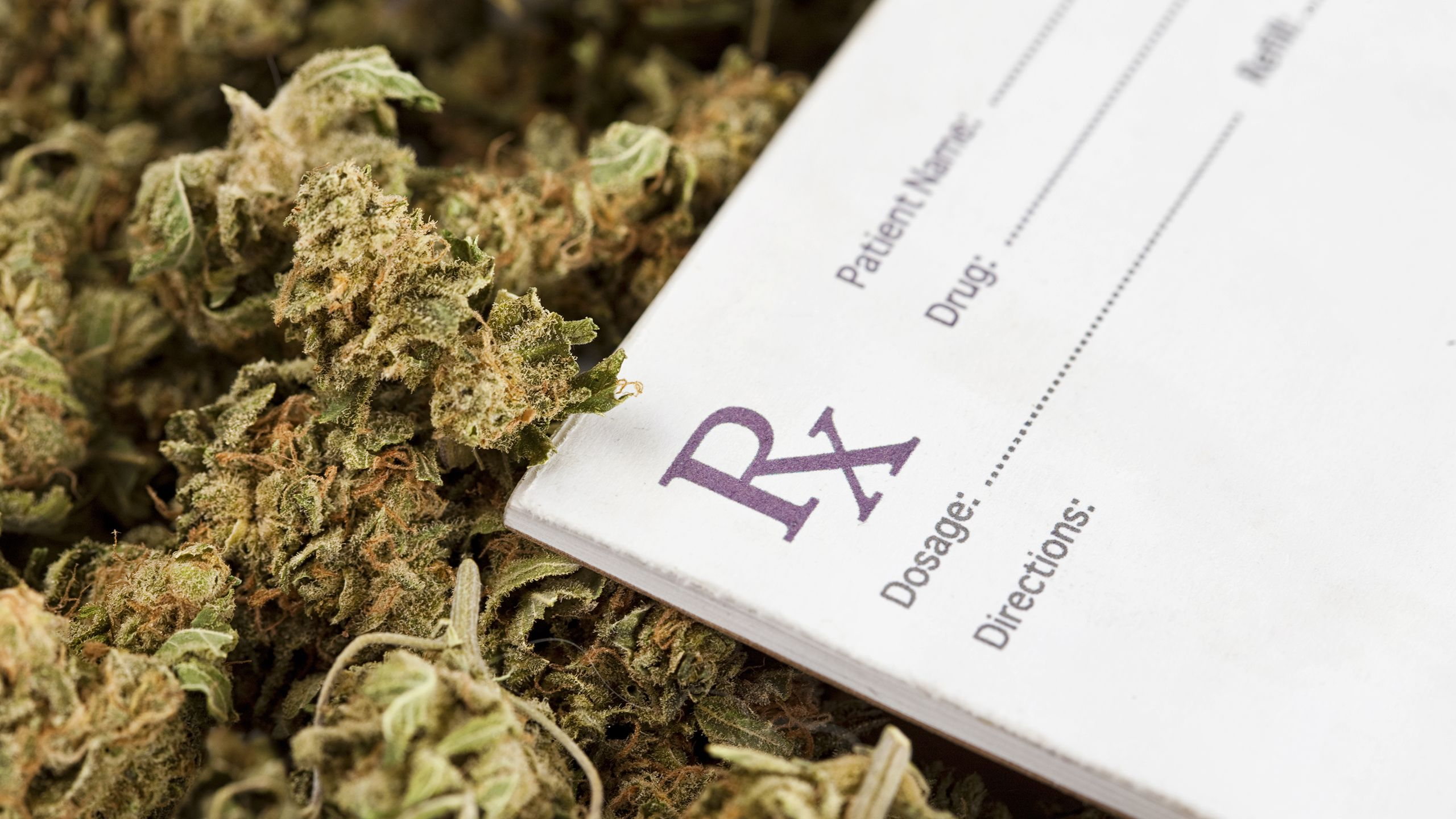 Can Medical Marijuana Laws Curb Opioid Use?