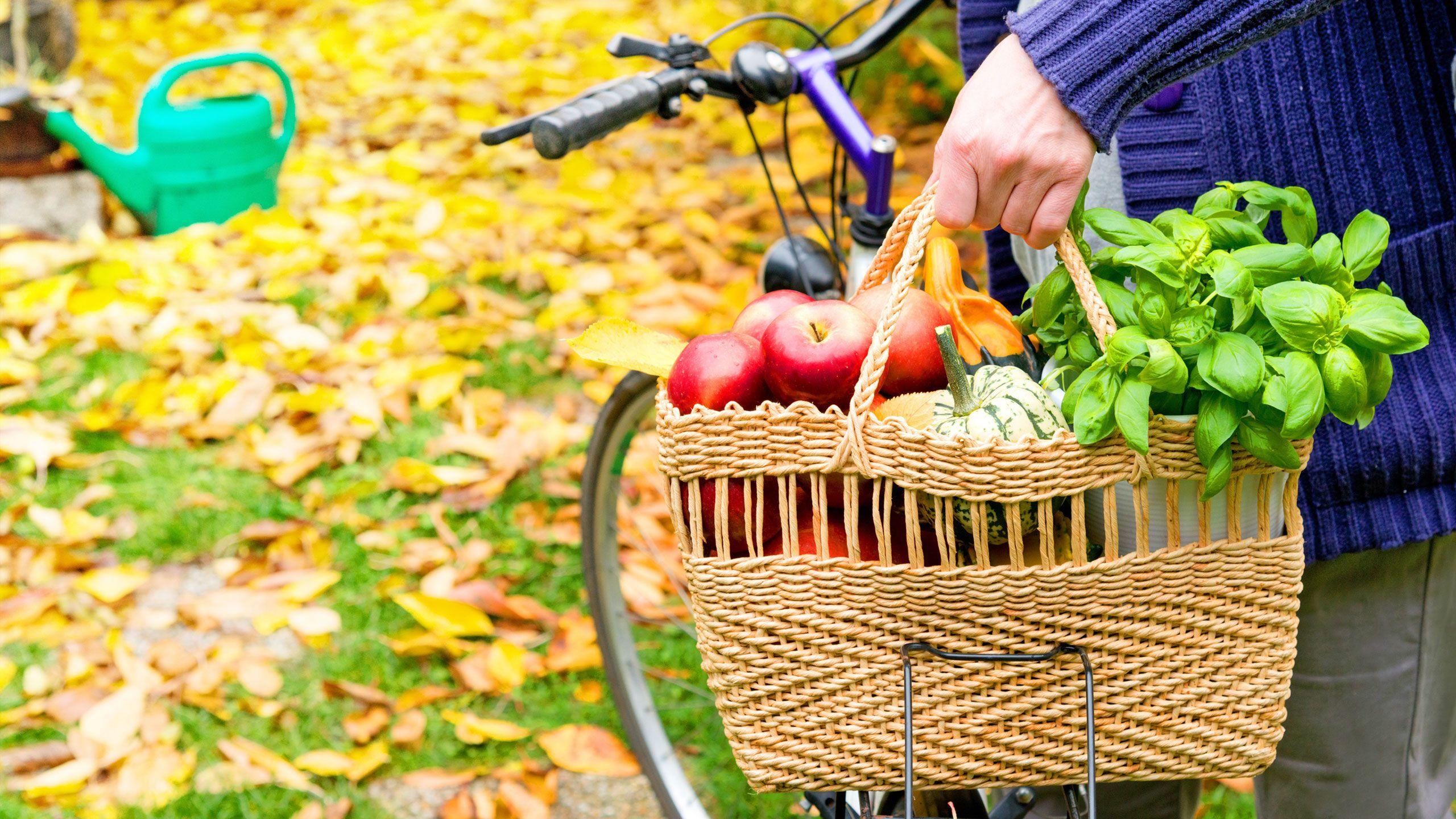 The Cheapest, Freshest Produce for Each Season