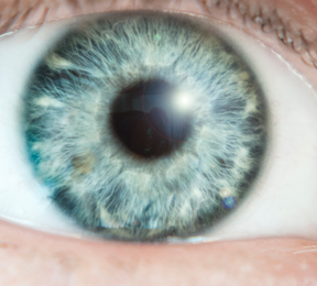 The Aging Eye: See into Your Future
