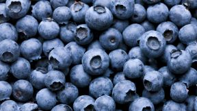 Get the Benefits of Blueberries Every Day