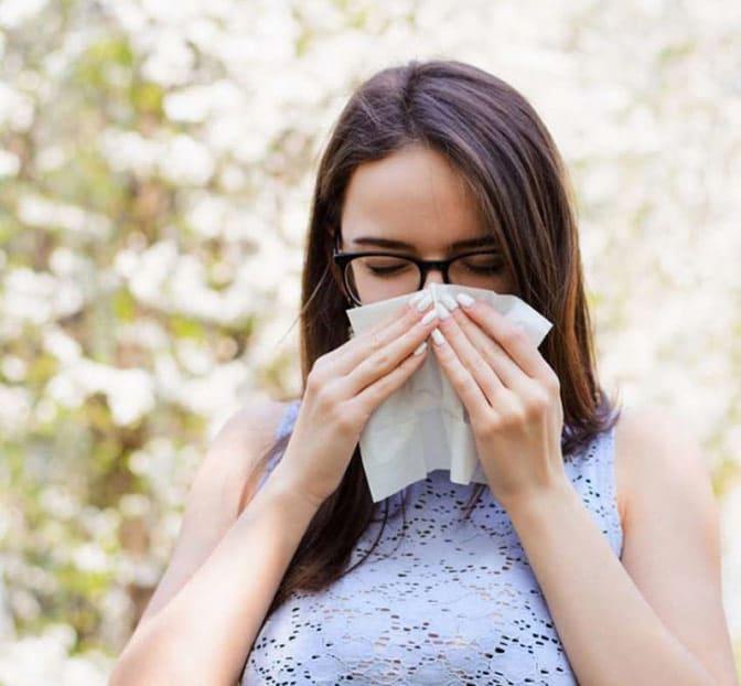 Optimal für Allergiker