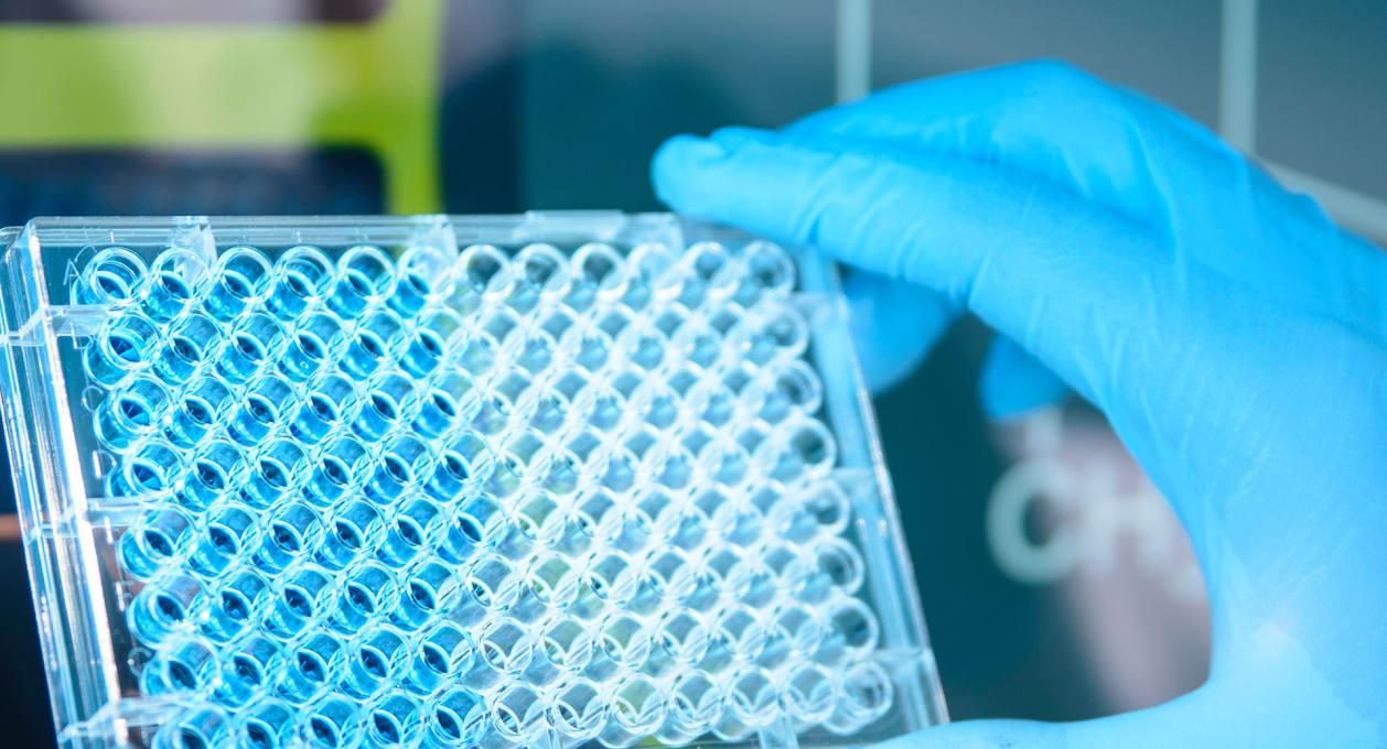 Examining lab results, healthcare