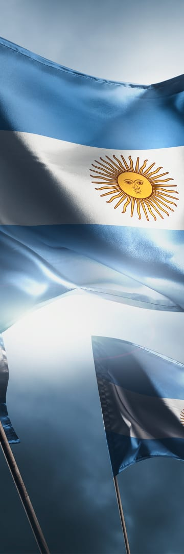 Argentine Sovereign Debt, Argentine flags