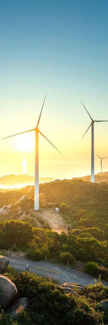 Wind power, renewables