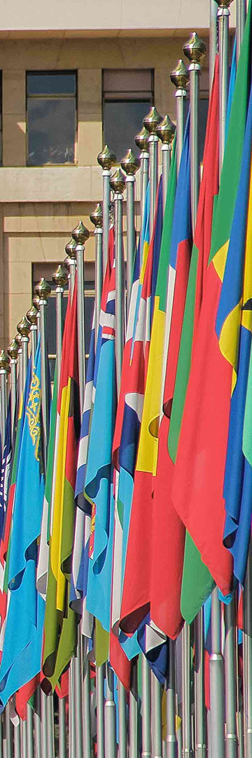 Public International Law, flags