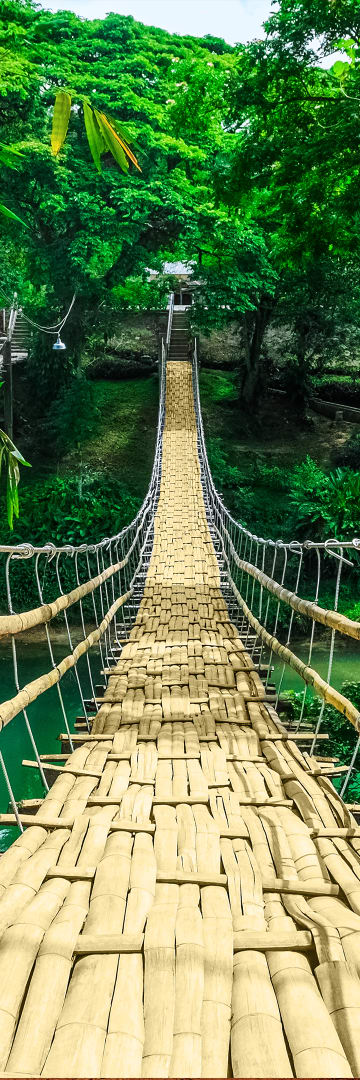 Asia Regions Bamboo Walkway