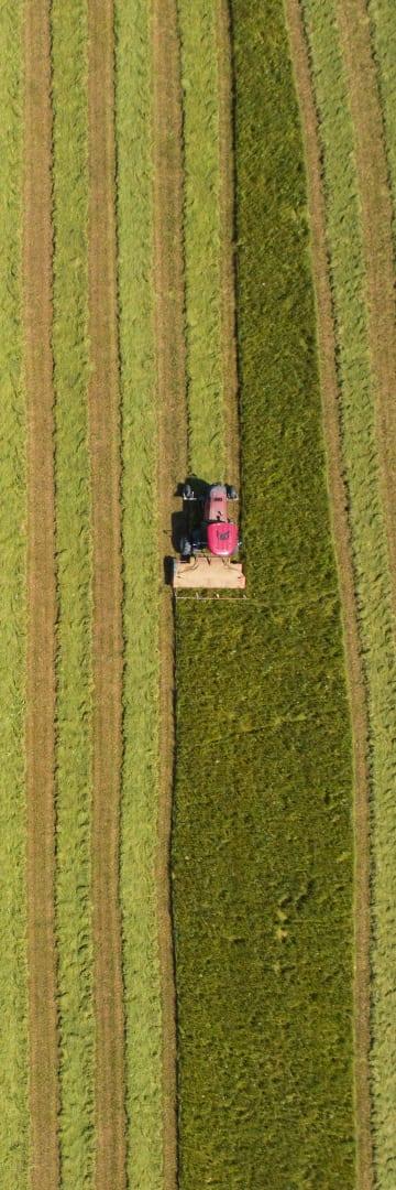 COVID FARM