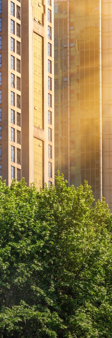 Corporate governance -- sun shining on office buildings and trees
