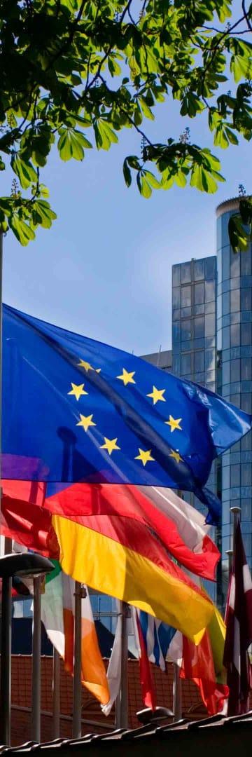Public International Law, EU flags