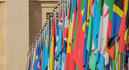 Public International Law, flags