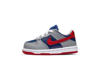 Nike Dunk Low Toddler
