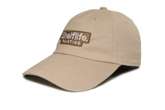 Shelflife Painting Cap
