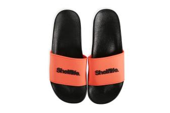Shelflife Slides