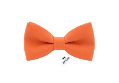 Buy this discounted product Bow Tie House Men's Pre-Tied Bow Tie in Classic Gabardine (Medium, Bright Tiger) on Amazon