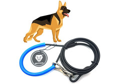 Buy this discounted product WATFOON - Chew Resistant Metal Dog Leash,Indestructible Leash for Heavy Duty Dogs (Black Blue) (4.3ft /130cm) on Amazon