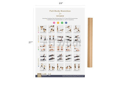 "Buy this discounted product Stretching Exercise Poster NOW LAMINATED - Shows How to Stretch Specific Muscles for Your Workout - Flexibility Exercises - Stretching Routine - Home/Gym Fitness 19""X27"" on Amazon"
