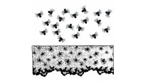 Buy this discounted product Halloween Decorations Indoor Black Lace Spider Multifuntion Scarf Cover with 20pcs Spiders for Festive Party Supplies Door Window Decoration on Amazon
