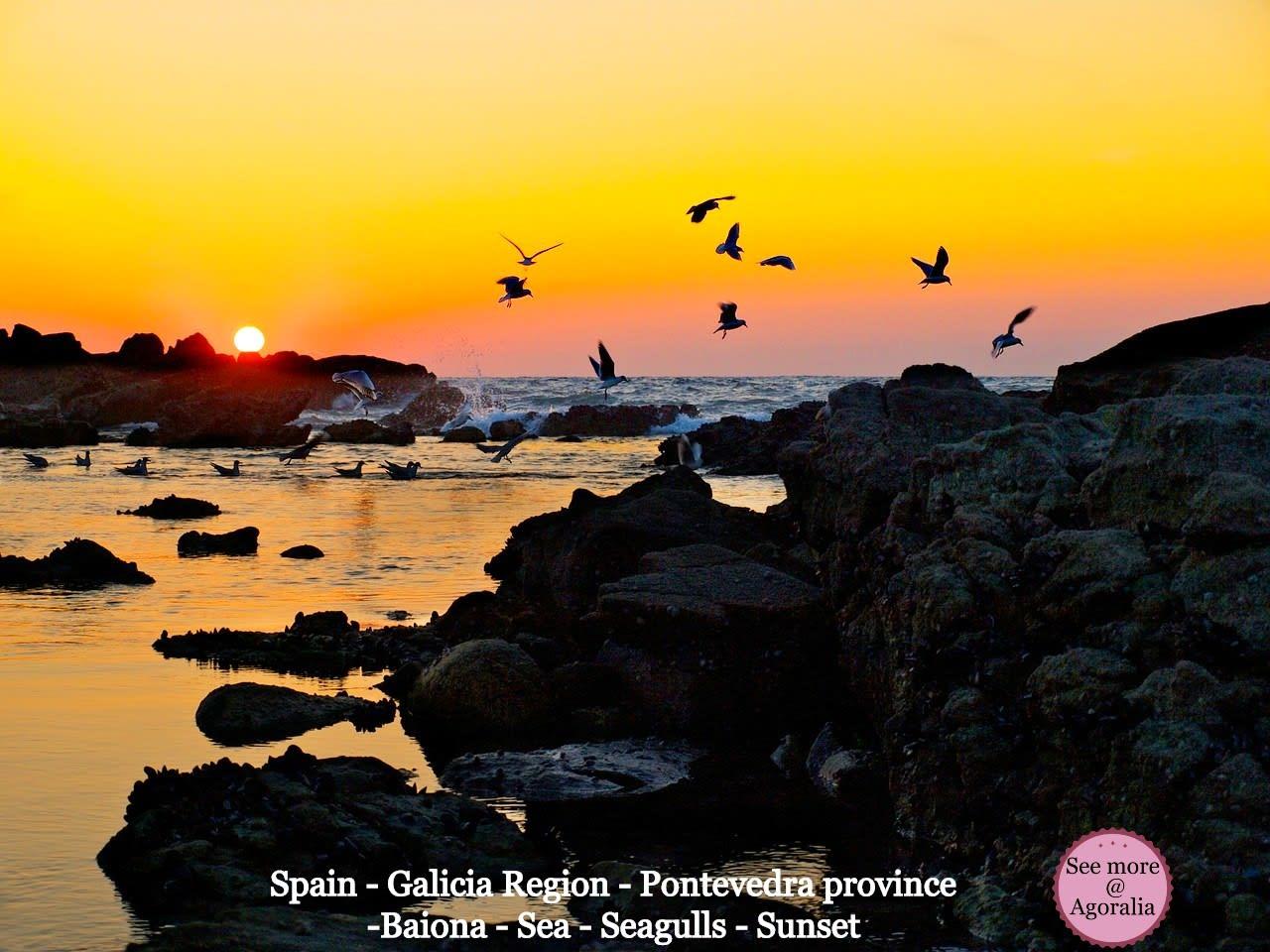 Spain-Galicia-Region-Pontevedra-province-Baiona-Sea-Seagulls-Sunset