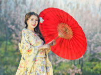Japan-Traditional-dress-Woman-Geisha