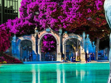 Spain - Canary Islands - Santa Cruz - Fountain