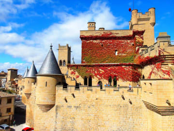 Spain-Navarre-Region-Olite-village-Castle