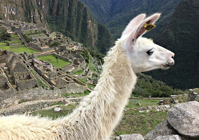 Best 31 Amazing reasons for visiting Peru