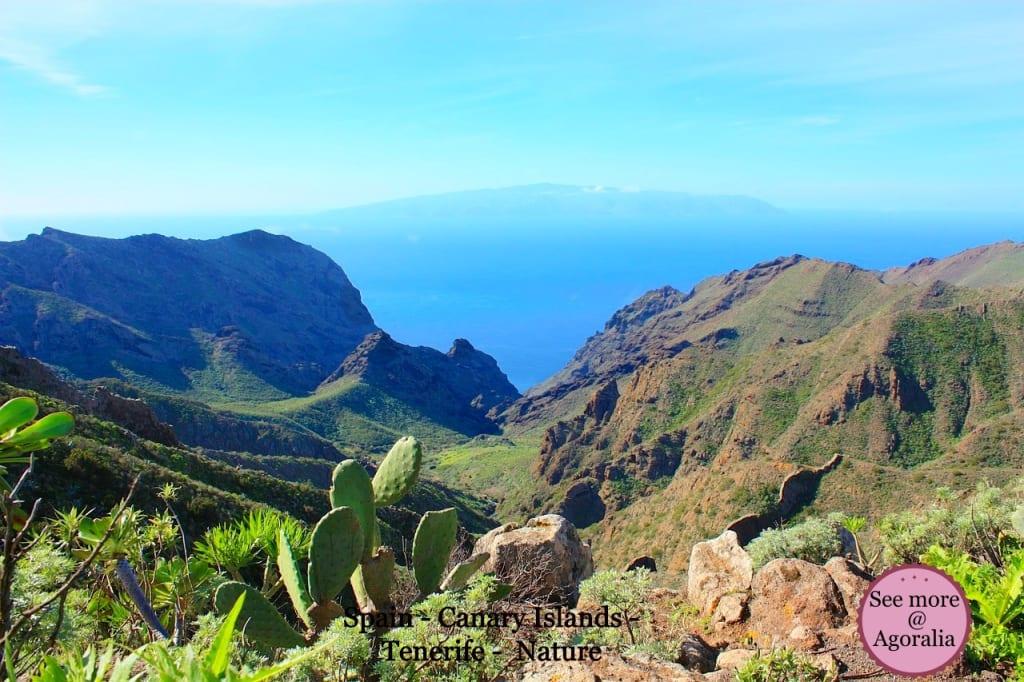 Spain - Canary Islands - Tenerife - Nature