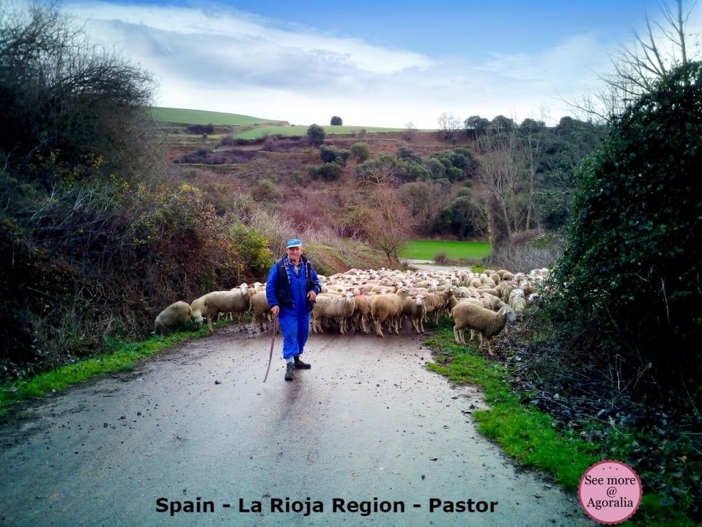 Spain-La-Rioja-Region-Pastor
