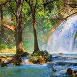 Agoralia-Mexico-Chiapas-Region-Forrest-Waterfalls