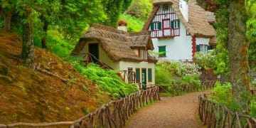 Portugal Madeira Region Forrest Thatch