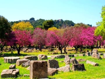 Greece Peloponnese Ancient Olympia