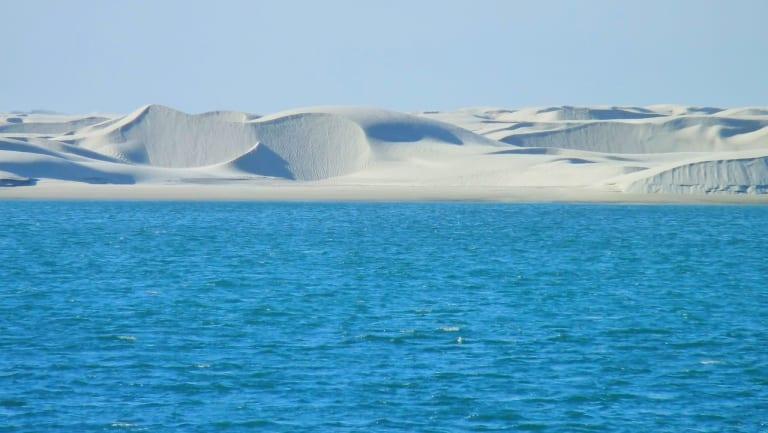 Agoralia-Mexico-Baja-California-Sur-State-Dunes