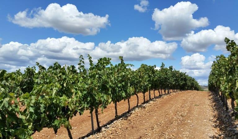 Wonderful Photo Trip to La Rioja Region. – Spain