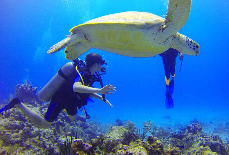 Mexico-Diver-Sea-Turtle