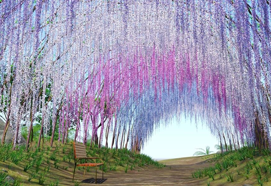 Japan-Park-Wisteria-park