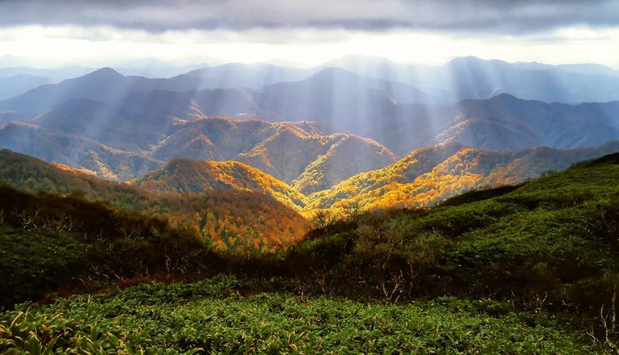 Japan-UNESCO-world-heritage-Shiragamisanchi