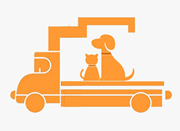 Pet Moving Services in Chennai