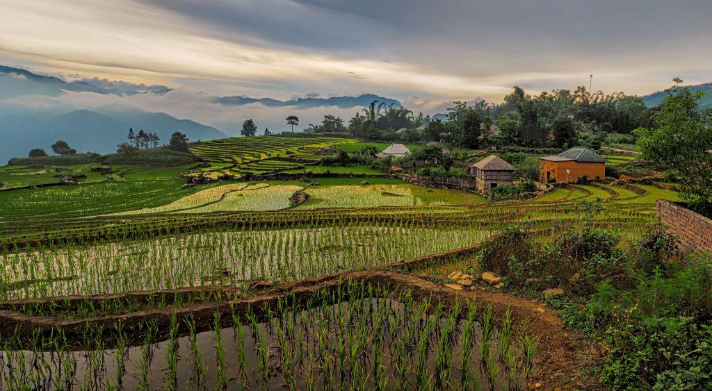 Y Ty, Vietnam