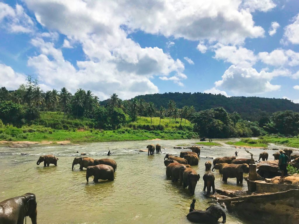 71100 To Elephant Bathing Position, Rambukkana, Sri Lanka