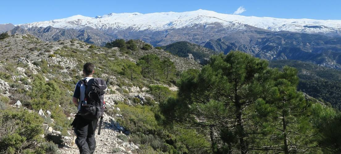 Walking in the Lecrin Valley