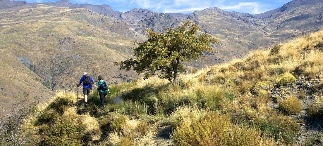 Above the Baranco de Poqueira