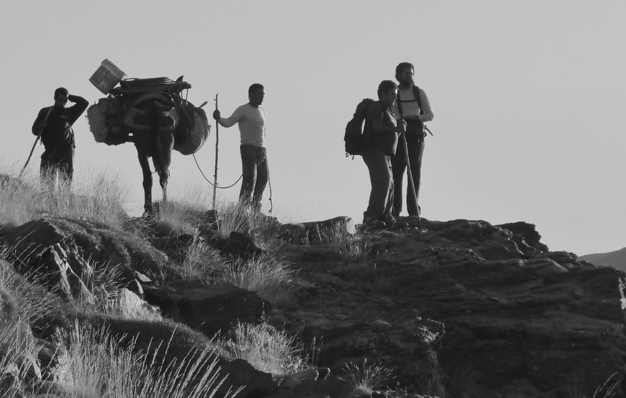 Mule, Muleteers and Mountaineers making a difference